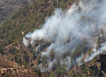 Canarias: La tragedia